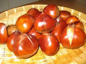 เกาลัดญี่ปุ่น Japanese Chestnut Kaolud